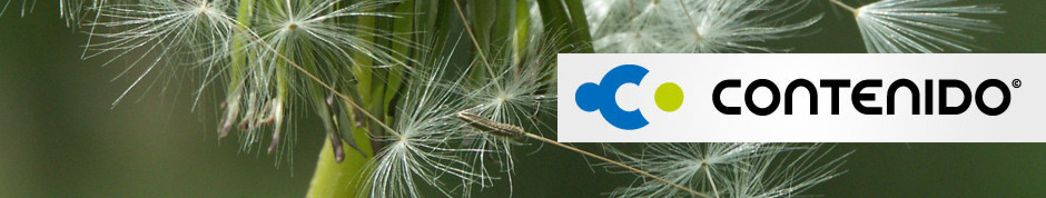 Contenido CMS Redaktionssystem solution-xl